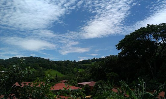 Hotel Cipreses Monteverde Costa Rica: Hermosa vista <3