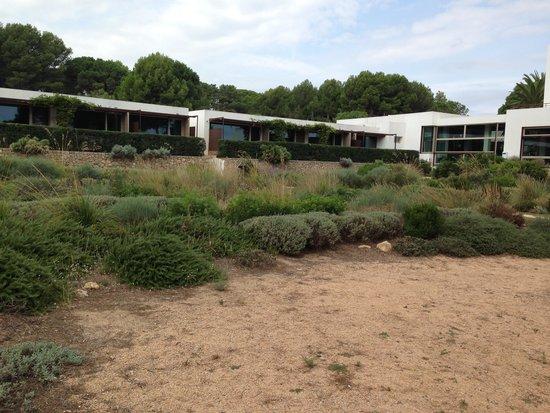Hostal Spa Empuries: Habitaciones SPA, vista al jardín