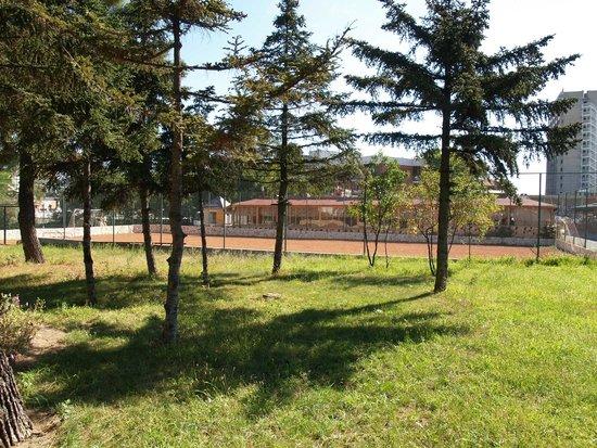 Balaton Hotel: Play football and voleyball here