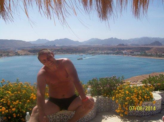 Beach Albatros Sharm: ))