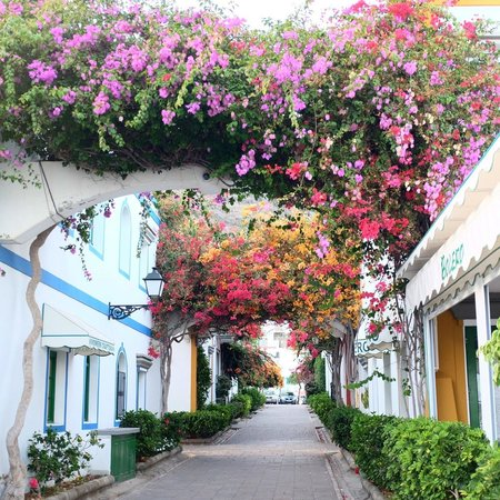 Restaurante El Capuchino 501: Puerto de Mogan.   So beautiful; don't miss it.