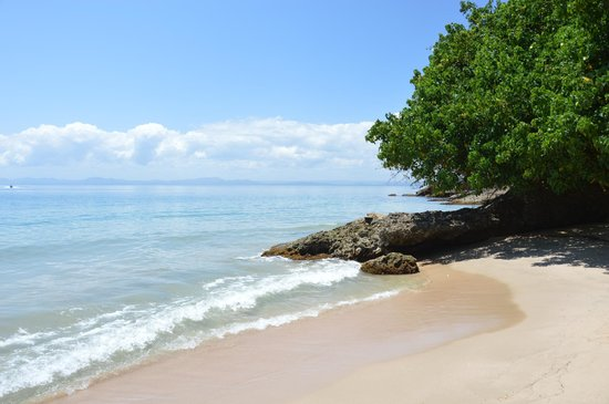 Grand Bahia Principe Cayacoa : Stranden