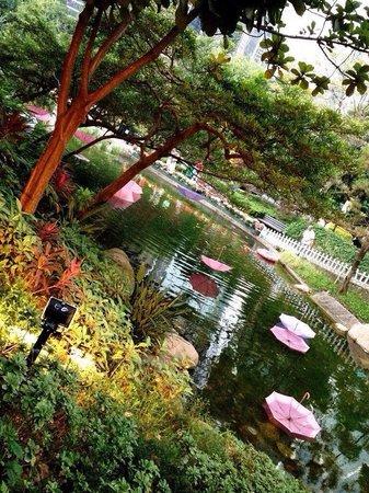 Hong Kong Park: Центральный парк Гонконга