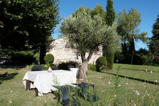 Mas de la Romane : Petit déjeuner près de l'olivier
