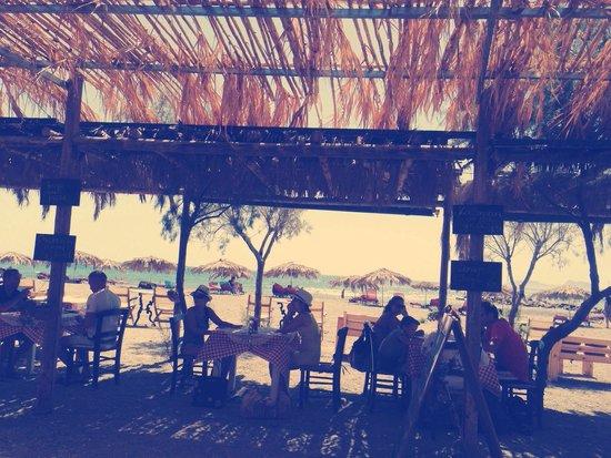 Tropica Club: Restaurant at the beach