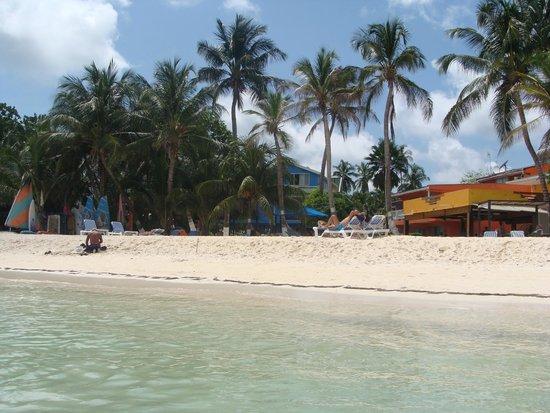 Cocoplum Beach Hotel: Playa
