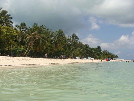 Cocoplum Beach Hotel: Una hermosa playa