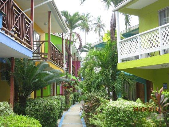 Cocoplum Beach Hotel: Cocoplum