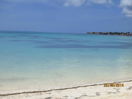 Cocoplum Beach Hotel: Que colores!!