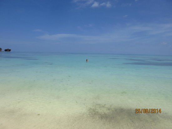 Cocoplum Beach Hotel: El mar