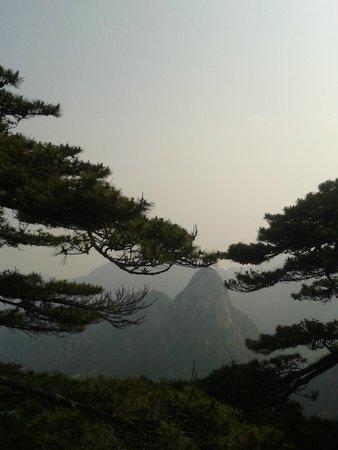 Mt. Huangshan (Yellow Mountain): Increibles vistas!