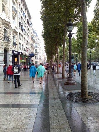 Champs-Élysées : Avenue Champs Elysees!