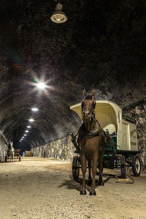 Ramsgate Tunnels: Horse & Milk Wagon