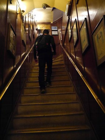 The Walrus Hostel: Escadas para os quartos, eles ficam no primeiro andar!