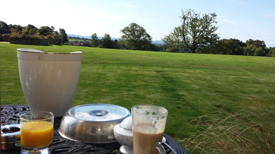 South Lodge Hotel: breakfast on the terrace