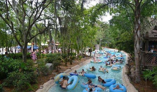 Disney's Typhoon Lagoon Water Park: Typhoon Lagoon