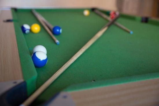 Milkwood Mansion: Entertainment Area / Pool Room