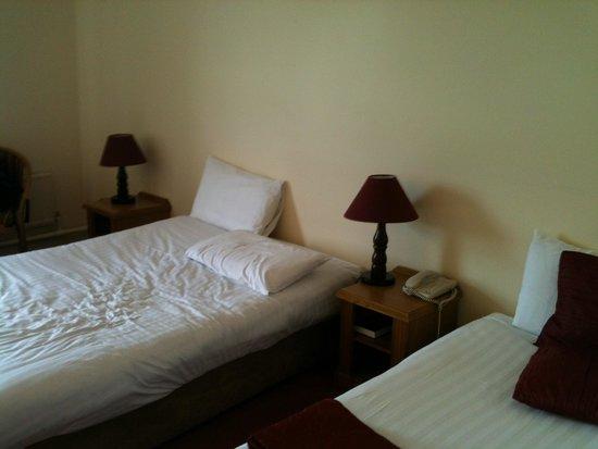 Auburn Lodge Hotel & Leisure Centre: Standard room