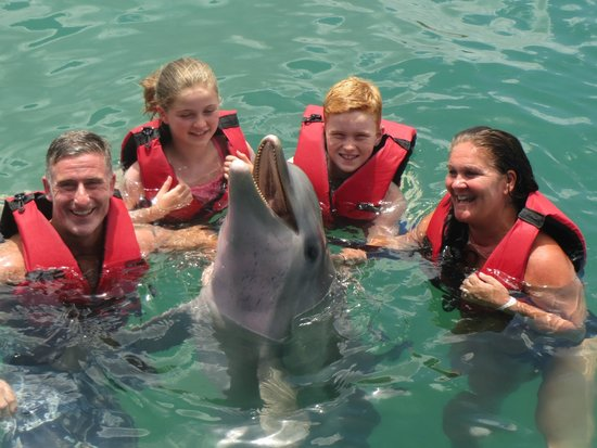 Hotel Playa Costa Verde: Dolphins.....very good value for money