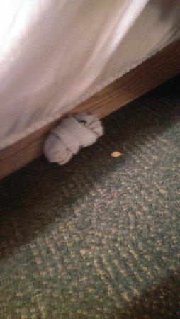 Days Inn - Orillia: socks under the bed skirt