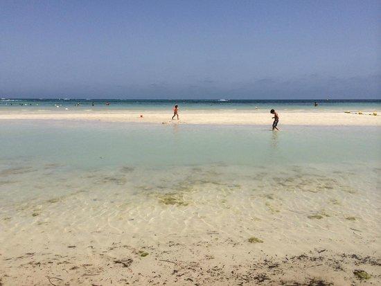 Yadis Djerba Golf Thalasso & Spa : Bassa marea