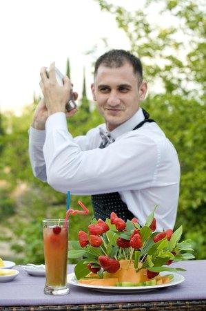 Hotel Podgorica: Coctail master