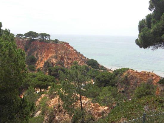 PortoBay Falesia: Blick von der Hotelanlage auf den Strand