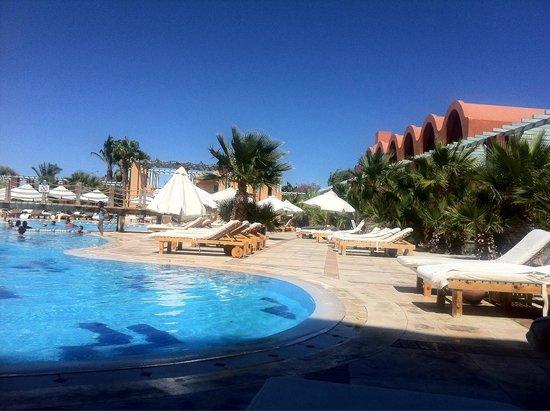 Sheraton Miramar Resort El Gouna: Swimming pool