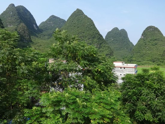 Yangshuo Tea Cozy : View from room 501 'Ginseng Oolong'