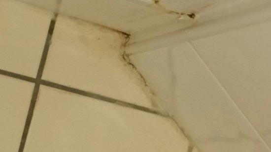 Appart'City Caen : Dirty bathroom floor