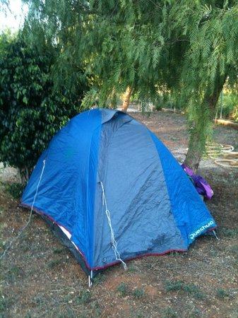 Camping Lilybeo Village: La mia tendina!