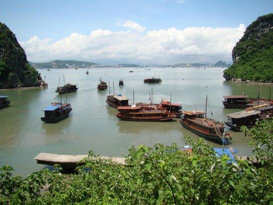 Ha Long Black Pearl Junk Day Cruise : Bay view