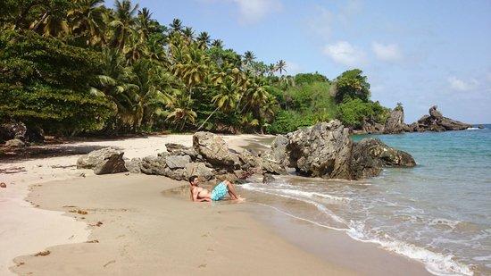 Xeliter Vista Mare Samana: Playa Privada 2