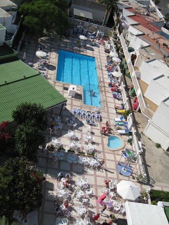 Globales Condes de Alcudia: Piscina vista do apartamento