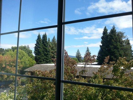 Hilton Garden Inn Napa: View from room 305