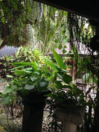 Dusun Jogja Village Inn : Garden areas with bird-cage lights in the trees