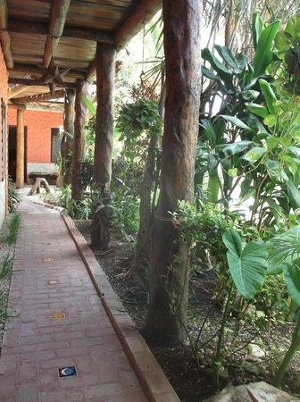 L'Hotelito : Pasillo y Jardin
