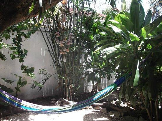 L'Hotelito : Sala y Jardin
