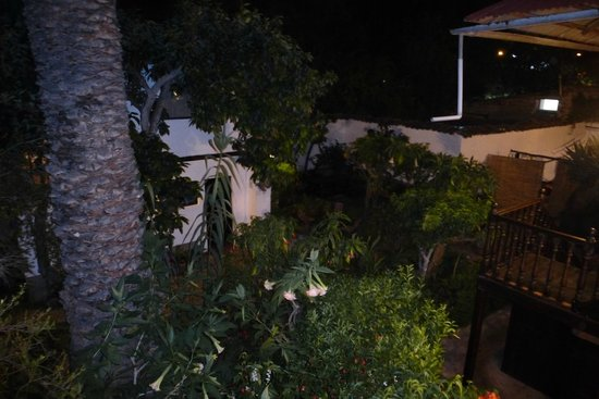 El Albergue Ollantaytambo : Courtyard