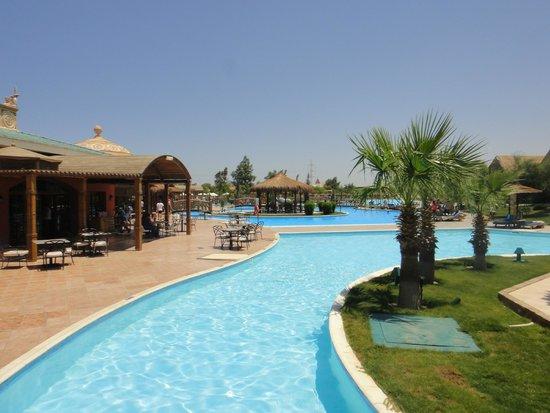Jungle Aqua Park : hotel grounds