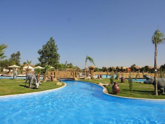 Jungle Aqua Park : Pool and grounds