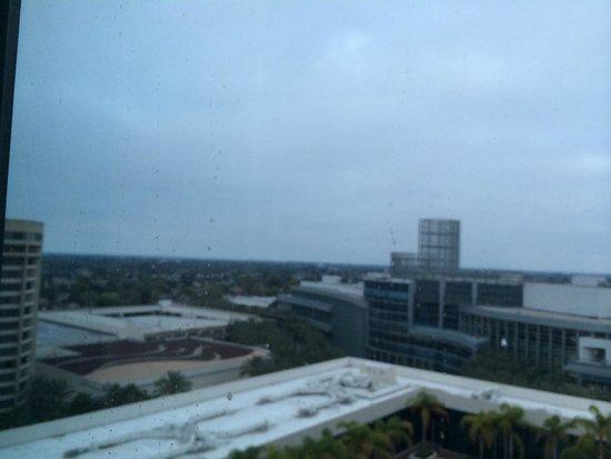 Hilton Anaheim: 部屋からの眺め