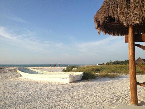 Casa Takywara: Playa abierta!
