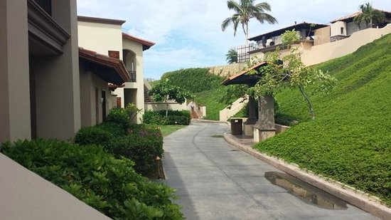 Pueblo Bonito Sunset Beach Golf & Spa Resort: The grounds are lovely