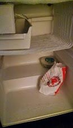 Quality Suites: Inside of Fridge that froze everything in it solid