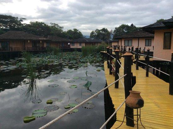 ViewPoint Lodge & Fine Cuisines : Bucolic lagoon