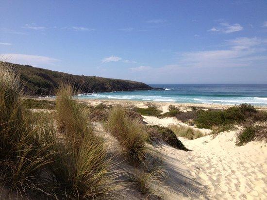 Treachery Camp Seal Rocks Treachery Beach