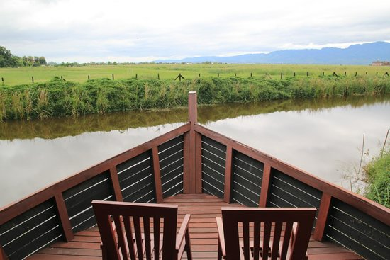 Pristine Lotus Resort : nice place to sit and read a book during the day