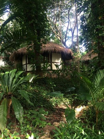 River Kwai Resotel : Our jungle bungalow.
