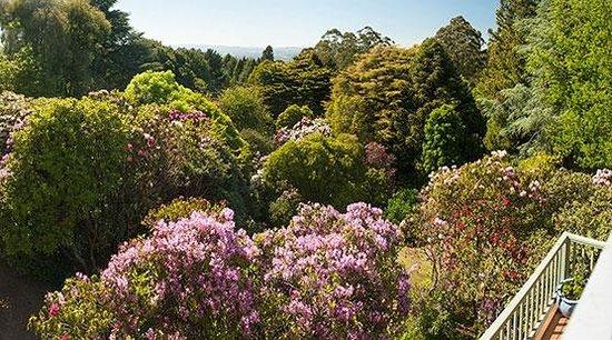 Woolrich Historic Garden Accommodation : Woolrich Retreat Gardens
